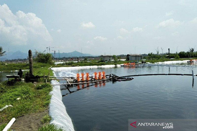Pemkab Kulon Progo targetkan tambak udang selatan BIY dikosongkan September