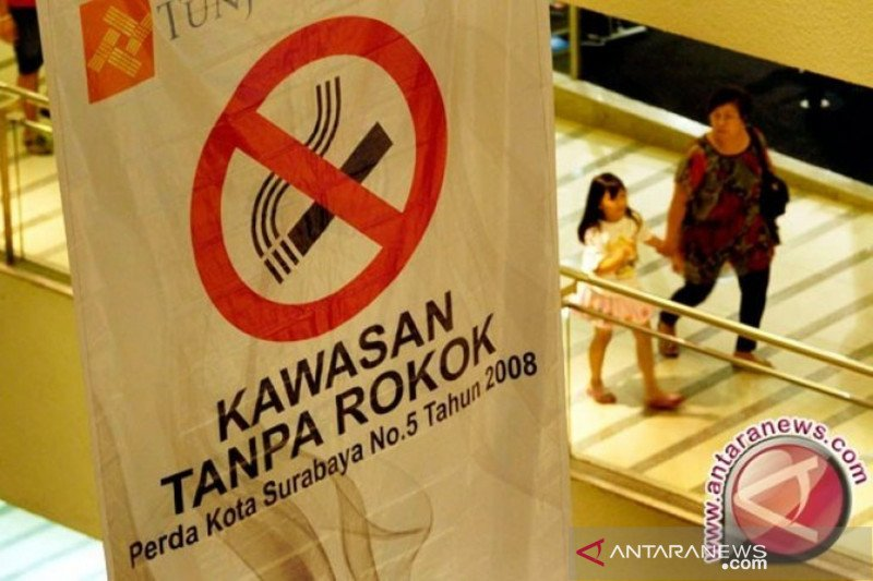 Menkes diharapkan memimpin pengendalian tembakau
