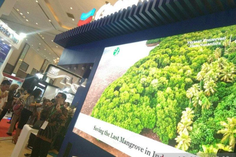 IPA Convex 2019, Chevron paparkan program penyelamatan mangrove