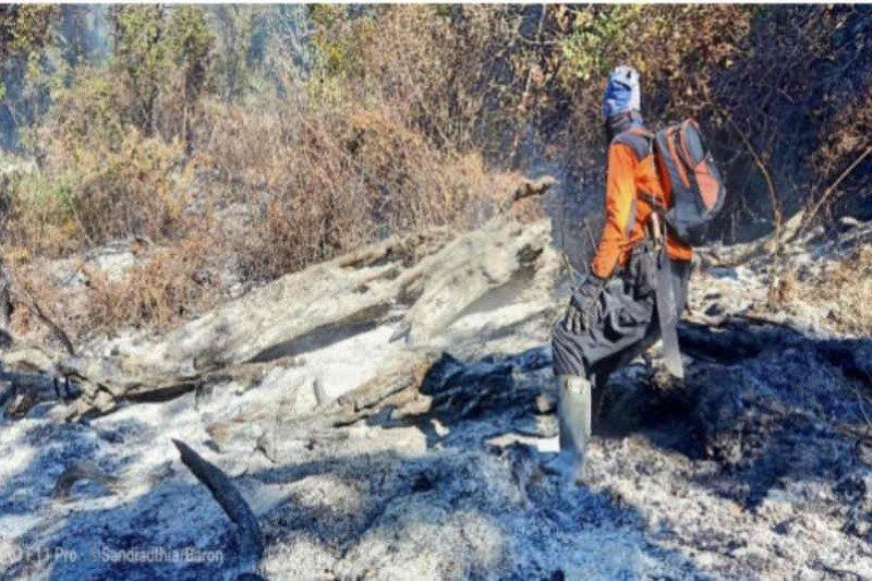Kebakaran puncak Gunung Ciremai sudah padam