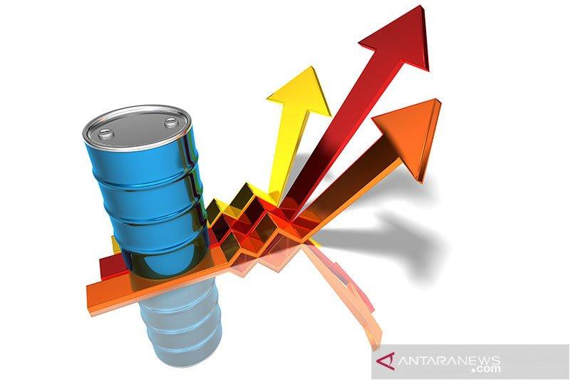 Harga minyak naik usai serangan terhadap Saudi