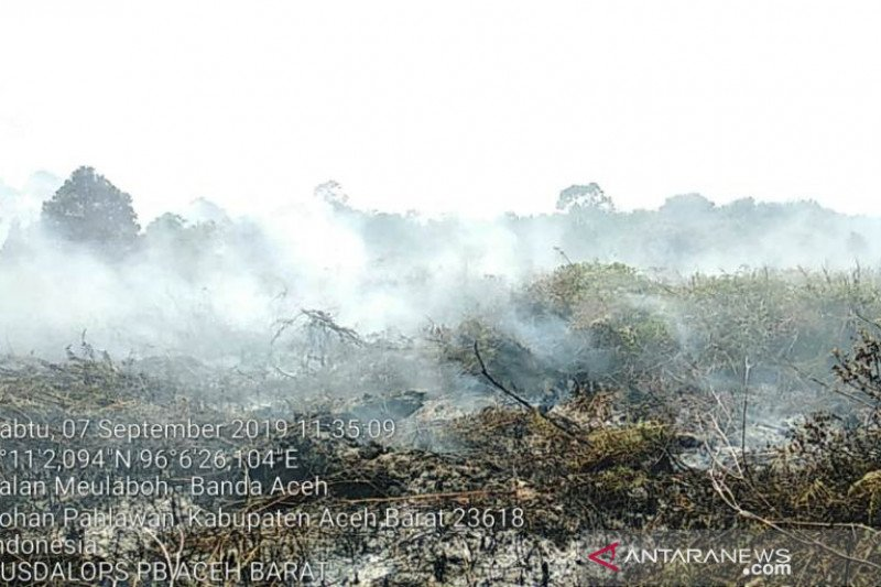 Karhutla di Aceh Barat meluas capai 1,5 hektare