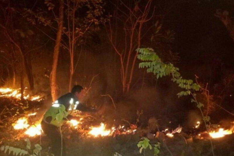 Kebakaran lahan di Kabupaten Majene berhasil dipadamkan