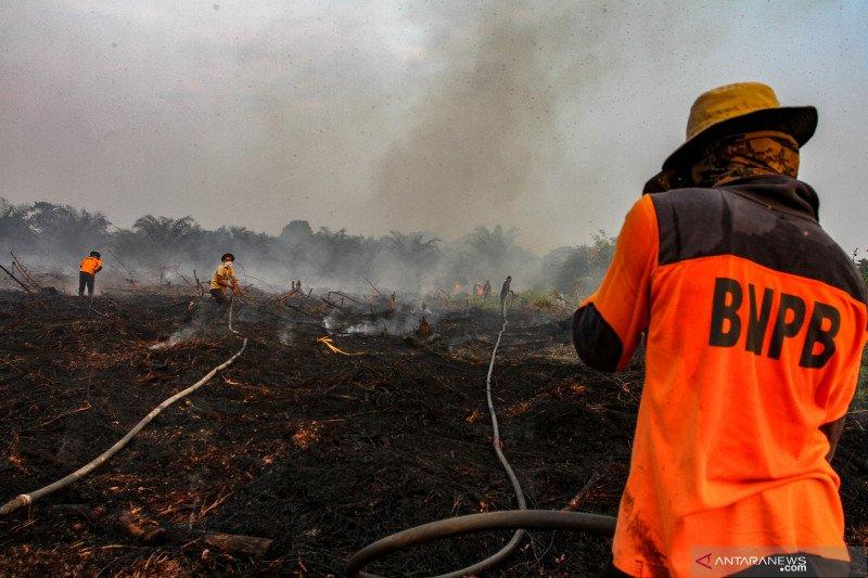 Karhutla Riau - BNPB: Luas Karhutla Indonesia 328.724 hektare, Riau paling luas di Sumatera