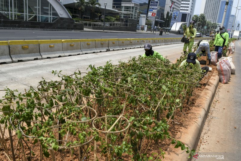 Jakarta tempati posisi ketiga udara terburuk sedunia pada Kamis pagi