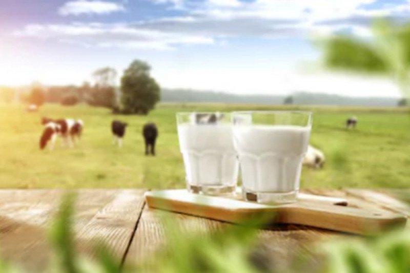 Minum susu rendah lemak dapat memperlambat penuaan