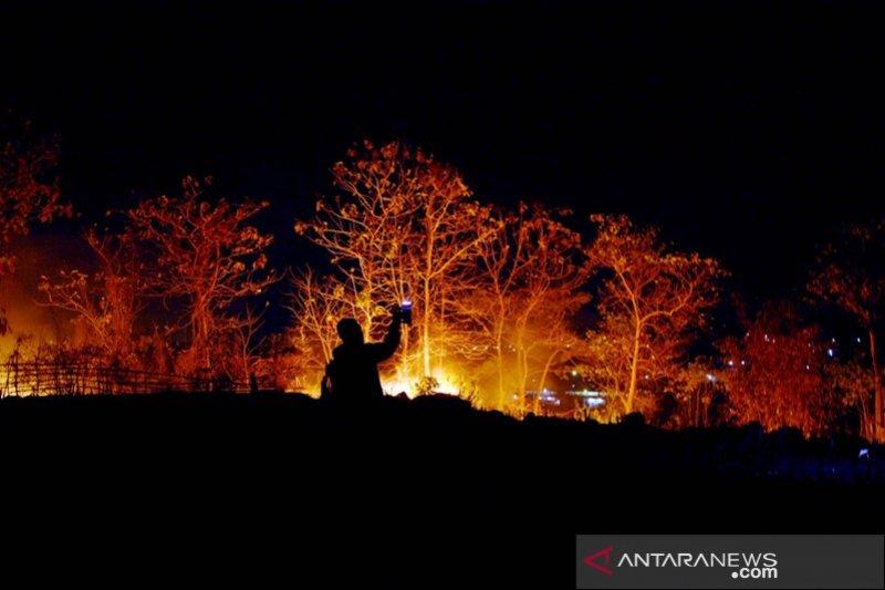 Kebakaran hutan di Gowa