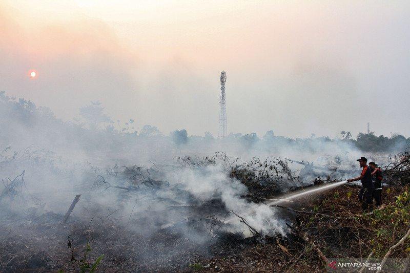 10 embung dibuat untuk antisipasi kebakaran lahan di Siak