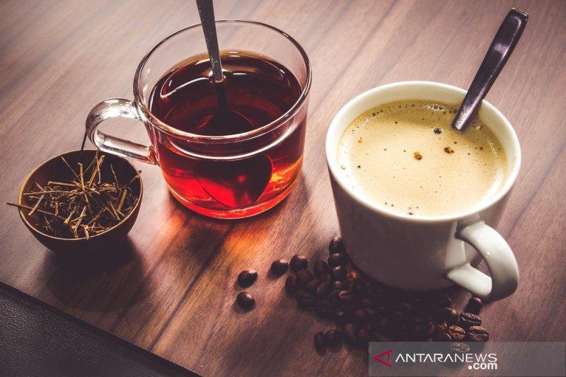 Minum teh terlalu panas bisa tingkatkan risiko kanker kerongkongan