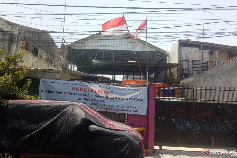 Sudin: Penampungan ayam di Kampung Rawa langgar perda