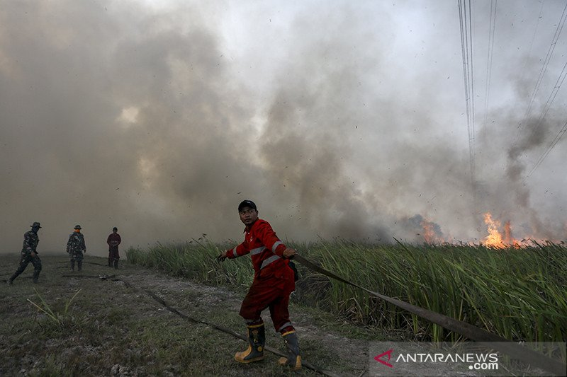 Polres Ogan Komering Ilir tangkap sembilan pembakar lahan