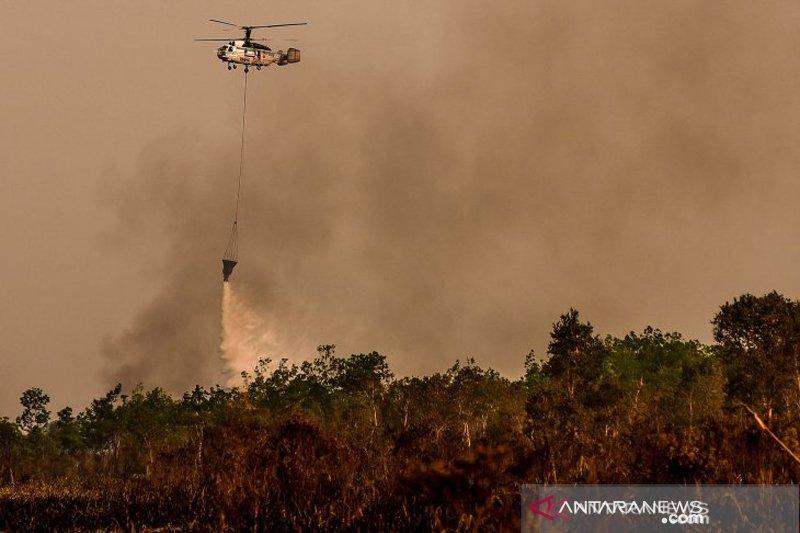Kebakaran lahan Soak Bato Ogan Ilir
