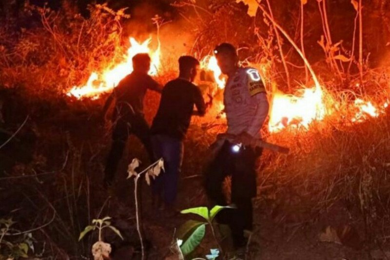 Kebakaran lahan Majene berhasil dipadamkan