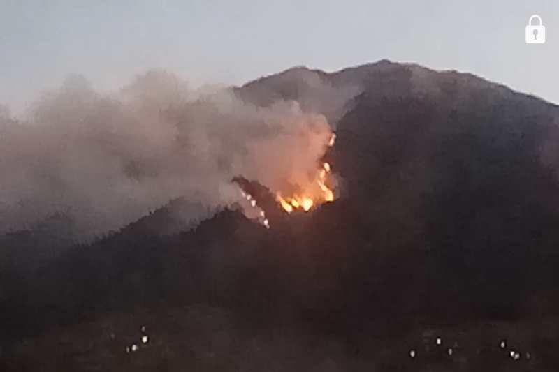 Hutan lereng Merbabu kembali terbakar