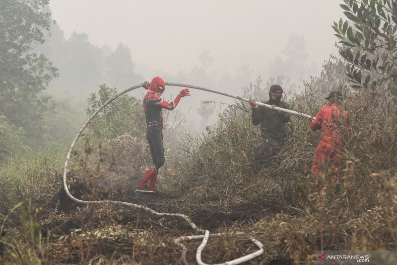 BRG: Pembenahan ekosistem gambut harus diperkuat untuk atasi karhutla