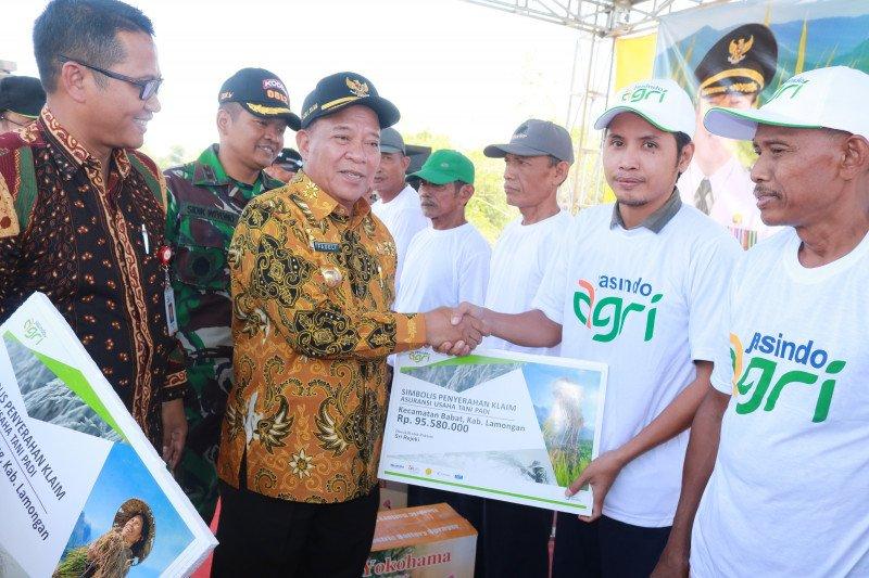 Petani Lamongan terima klaim asuransi gagal panen Rp3,6 miliar.