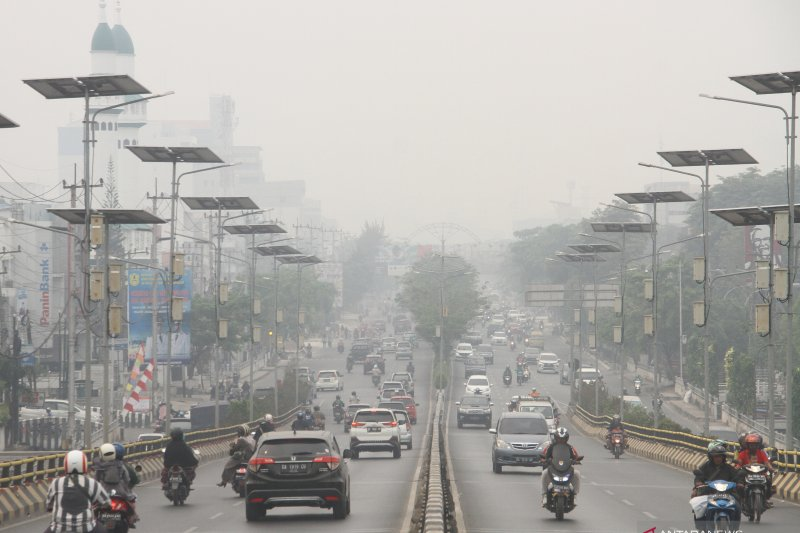 Smog from forest fires could kill indirectly: BNPB