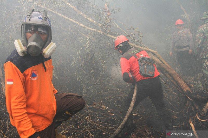 Anggota DPRD : Perusahaan pembakar hutan harus diusir dari Riau