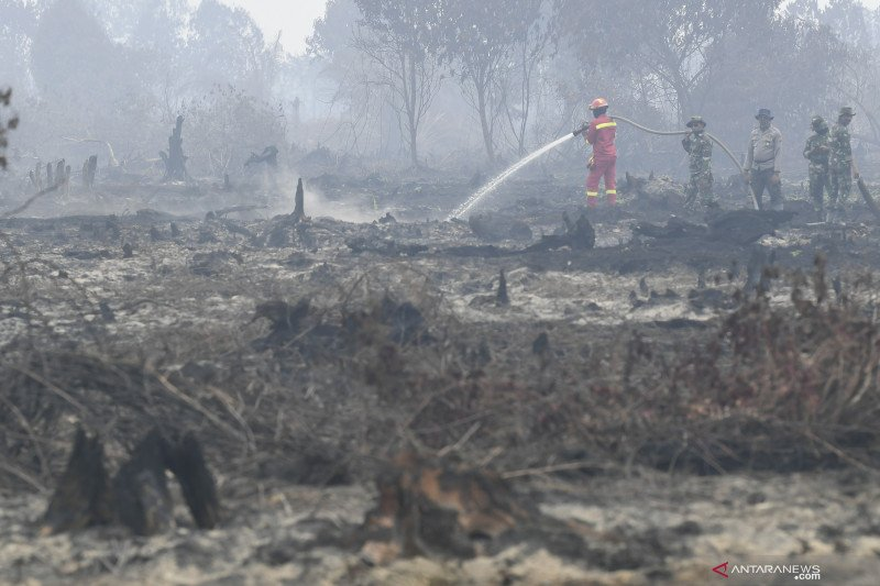 Greenpeace : KTT ASEAN momen tepat atasi masalah asap lintas batas