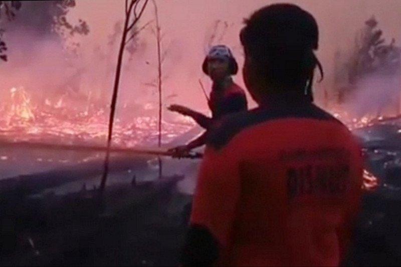 Palangka Raya siapkan Rp1,7 miliar selama tanggap darurat karhutla