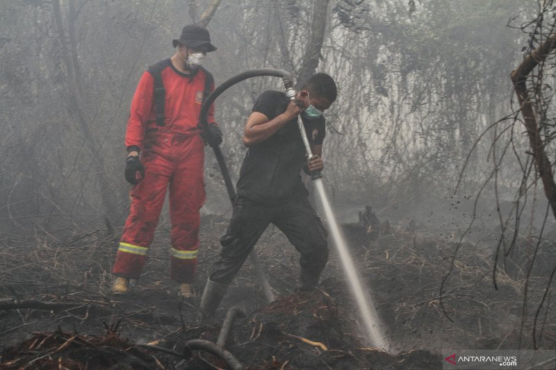 Akibat asap karhutla, Riau diperkirakan alami kerugian Rp50 triliun