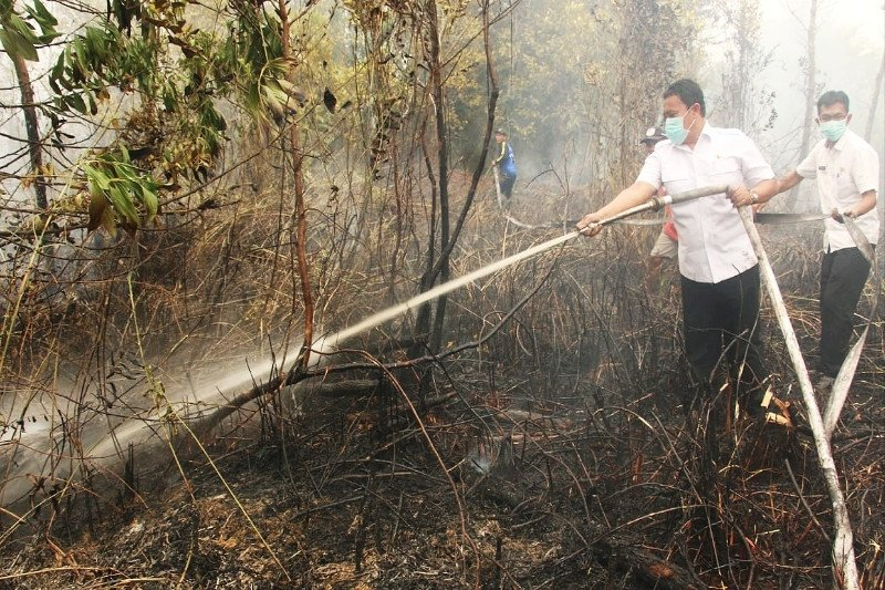 Jangan 'kambing hitamkan' Pulpis terkait kabut asap di sebagian wilayah Kalteng