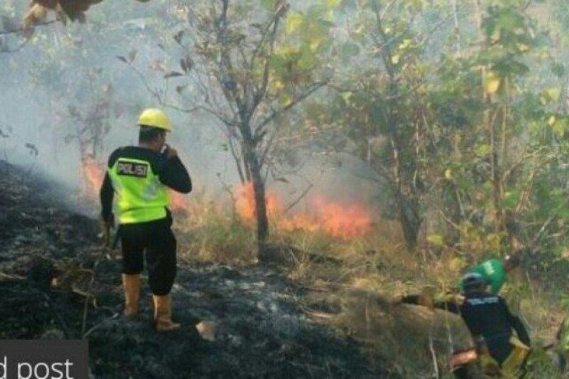 Dua hektare lahan warga Majene hangus terbakar
