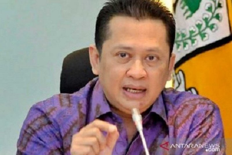 House urges Forestry Ministry to set up forest  fire task forces
