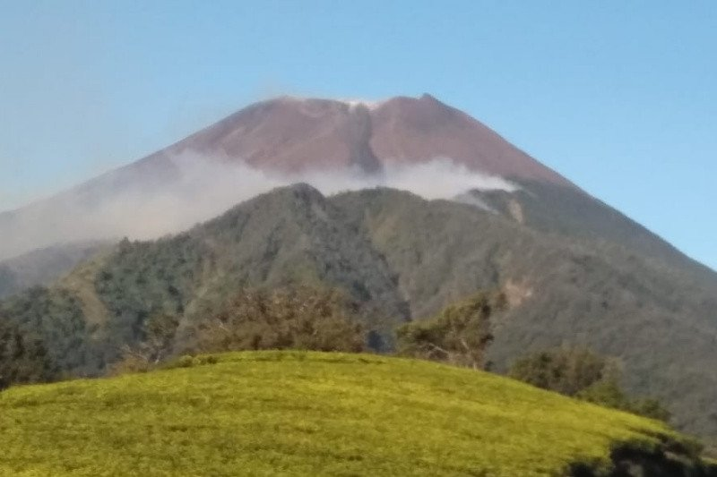 Karhutla di Gunung Slamet berkobar di lereng barat-selatan