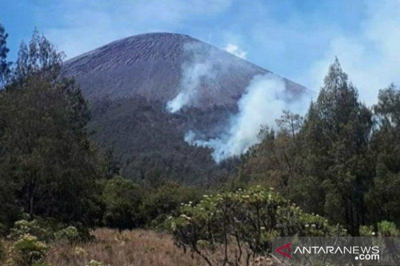 Kebakaran hutan di jalur pendakian Gunung Semeru
