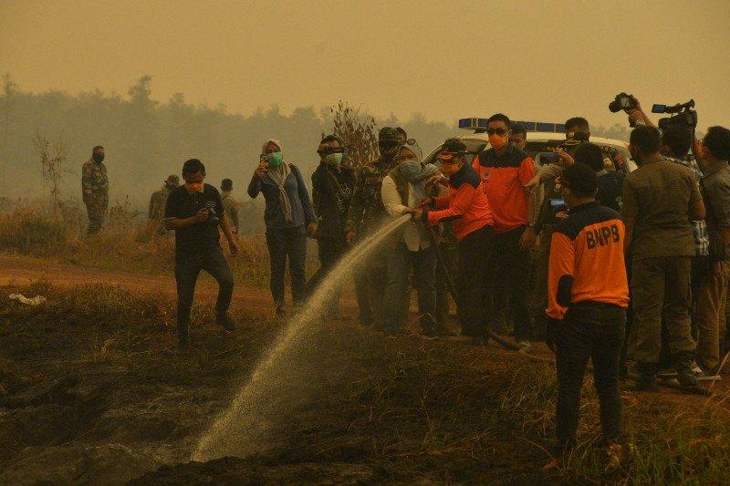 Walhi Jambi sebut bencana karhula 2019 masuk kategori parah