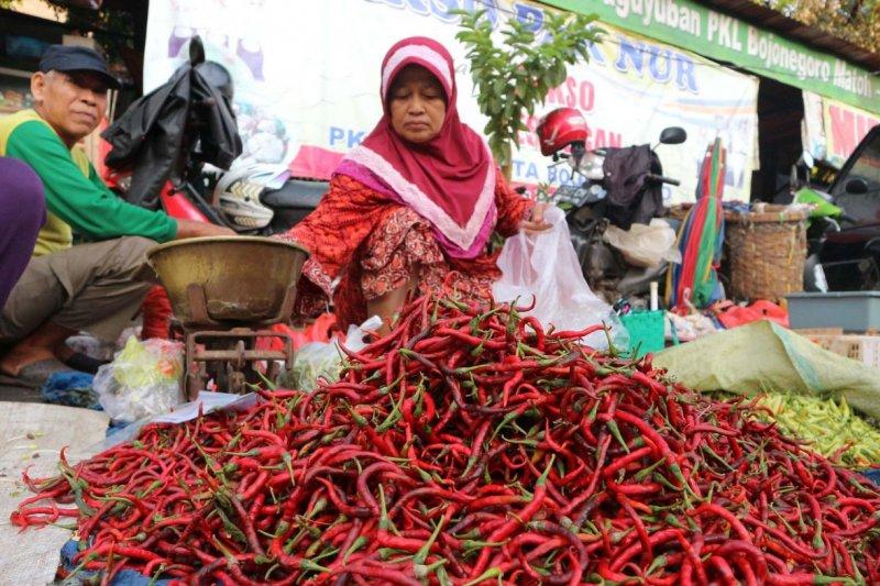Harga cabai merah keriting di Baturaja anjlok