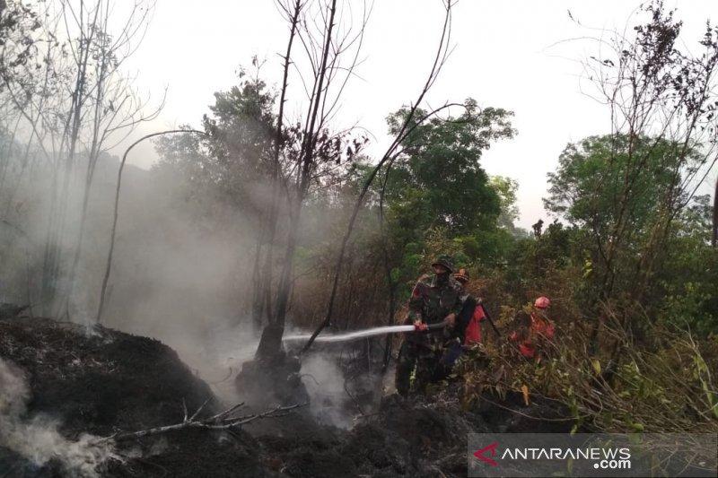 Antisipasi kebakaran hutan, patroli di kawasan tahura diintensifkan
