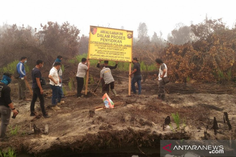 Polda Jambi garis polisi lahan PT MAS yang terbakar