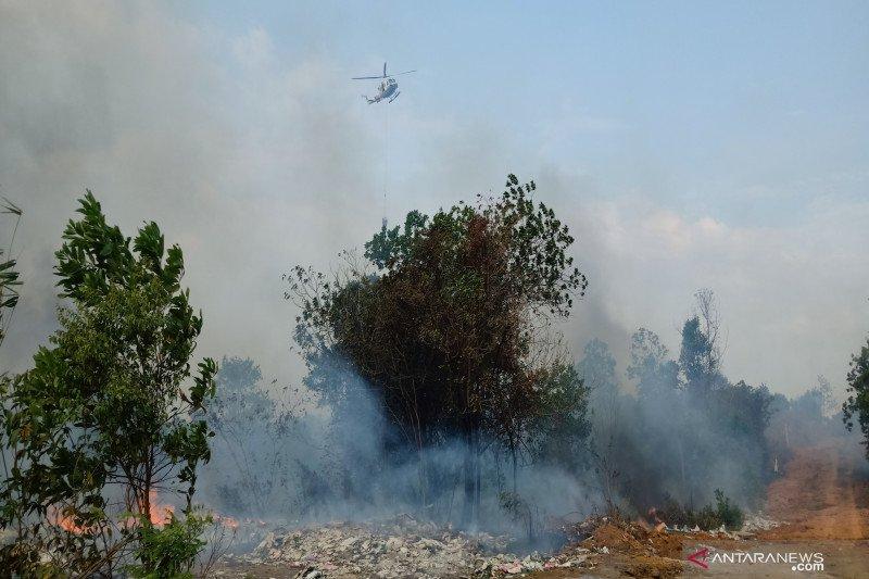 Bupati Majene minta kebakaran hutan dan lahan diusut