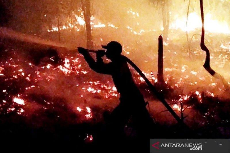 Sudah 800 hektare lahan terbakar di Kotawaringin Timur