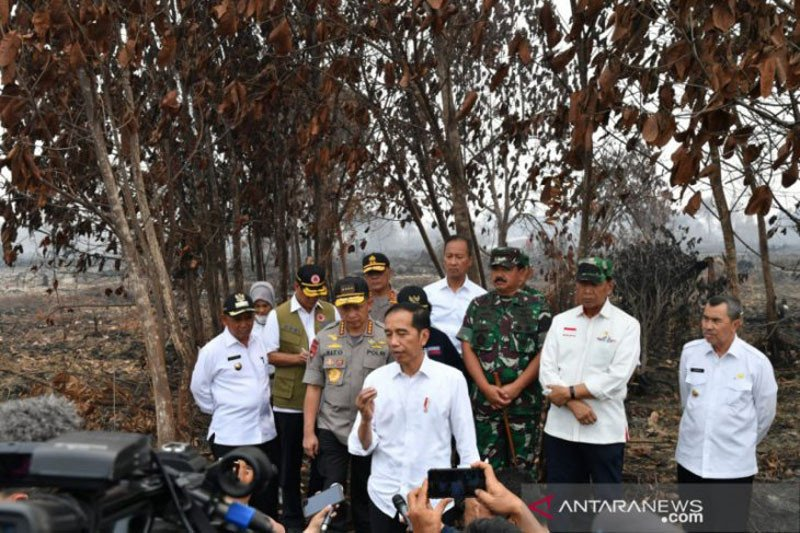 Jokowi berencana ke Kalteng tinjau karhutla