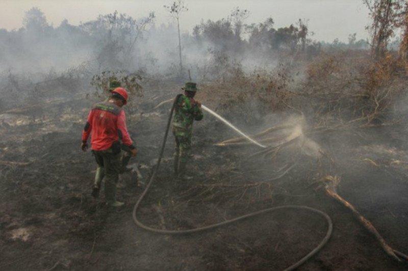 Seluas 20 hektare lahan terbakar di Solok Selatan