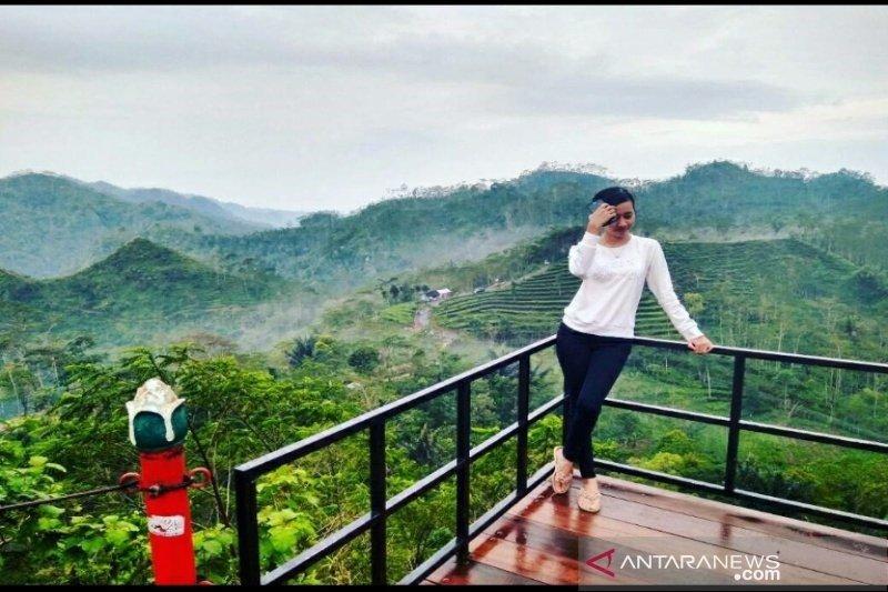 Dispar Kulon Progo membina objek wisata selfie dengan sasaran kaum milenial