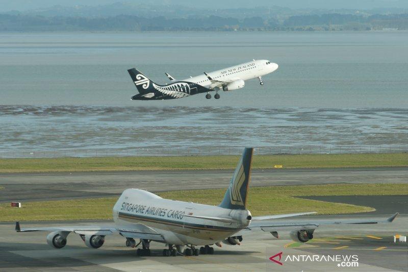 Penerbangan Selandia Baru sempat dihentikan karena gangguan radar