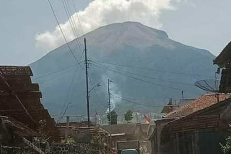Hutan Gunung Sindoro terbakar