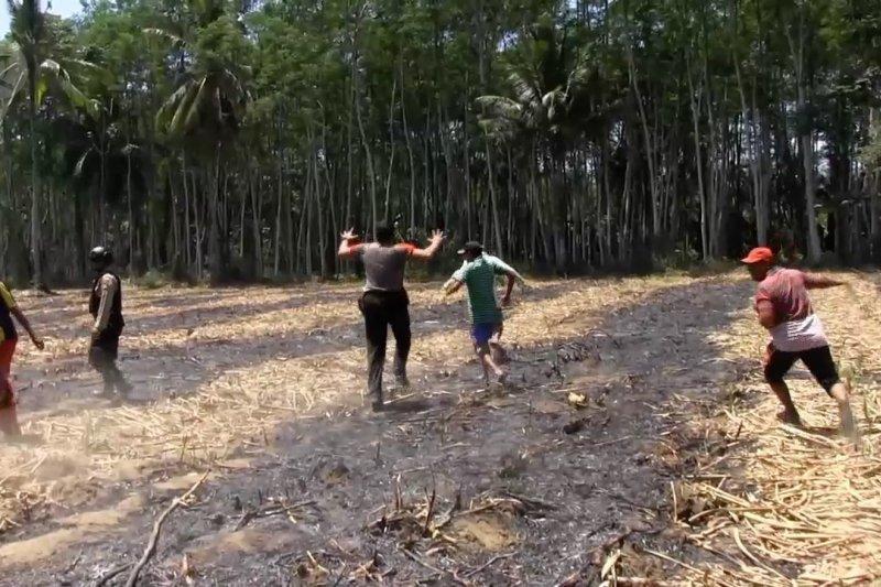 Bom latih pesawat TNI AU jatuh di perkebunan warga