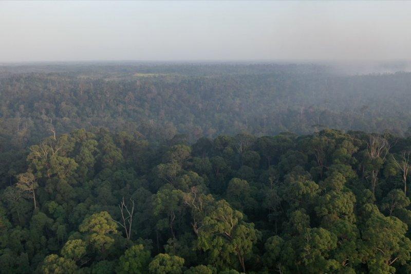 Kementerian LHK siapkan Kajian Lingkungan Hidup Strategis