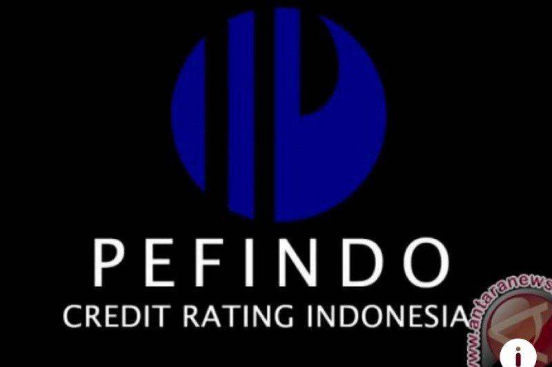 Pefindo naikkan peringkat utang APL jadi idBBB+