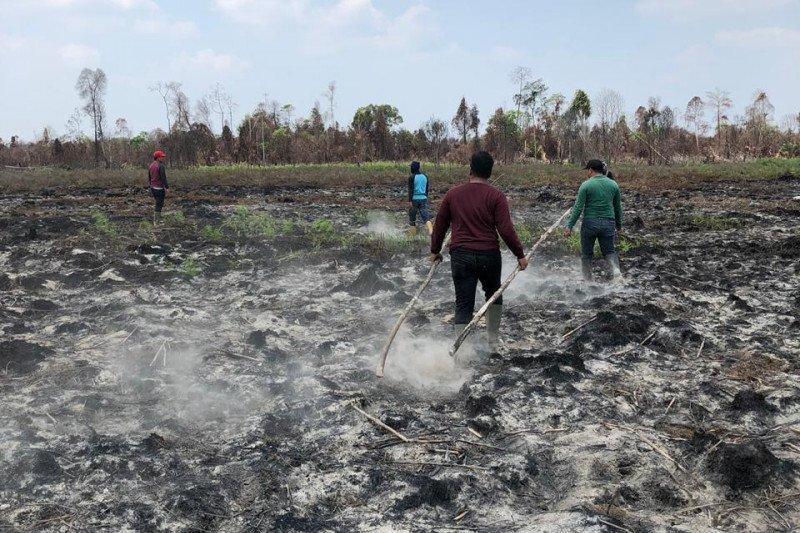 Anggota DPRD Riau mengkritisi kinerja pemadam karhutla