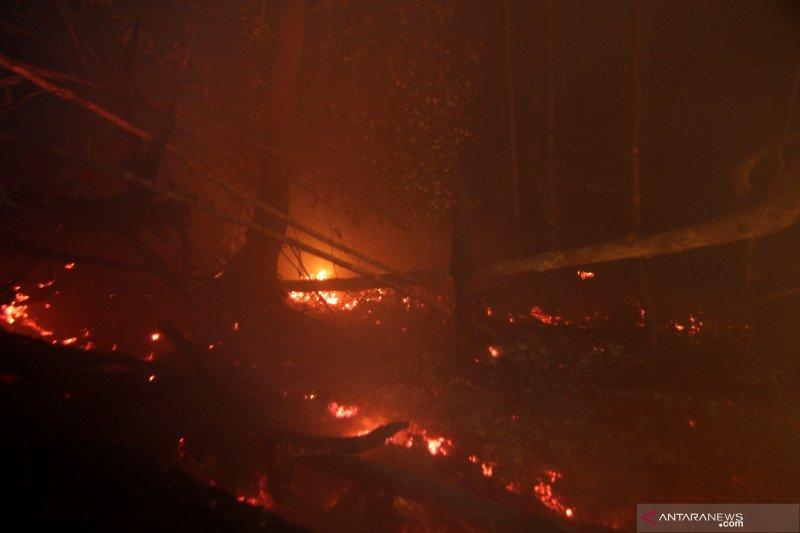 Status tanggap darurat Karhutla Kalteng tidak diperpanjang