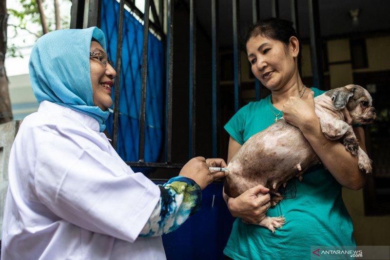 Vaksinasi pencegahan HPR