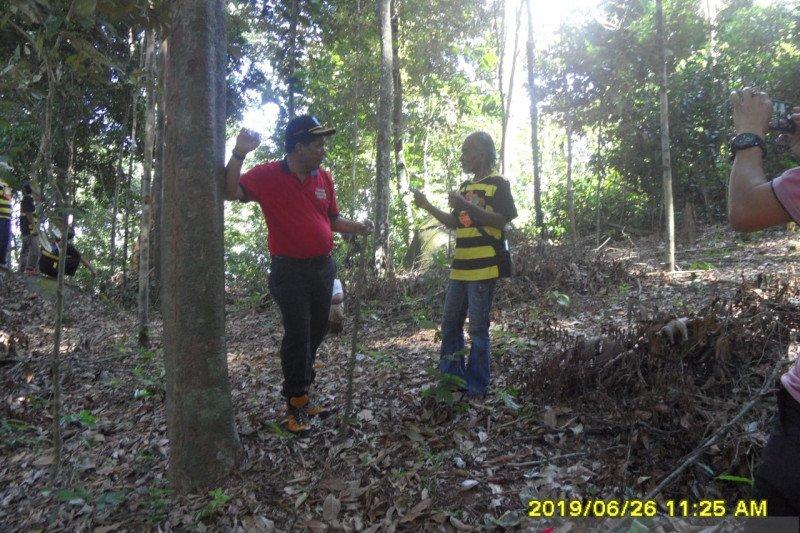 Dishut Babel rintis usaha masyarakat dengan memanfaatkan potensi hutan