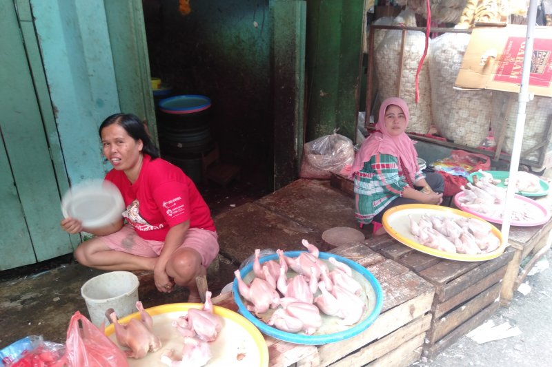 Harga ayam potong di Baturaja naik jadi Rp27.000/Kg
