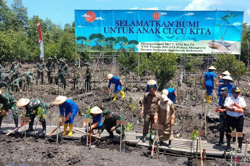 Koarmada III menanam 64.000 bibit pohon mangrove
